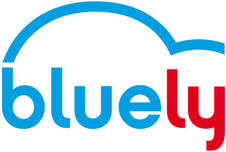 BlueLy in Lyon : Bolloré's car sharing service get adjusted